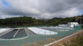 清崎モデルファーム(微細藻類培養事業)